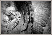 Engel von Petra Hinz