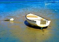 Boot auf der Sandbank by Wolfgang Wittpahl