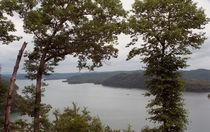 Cumberland Lake Vista von Sandra Woods