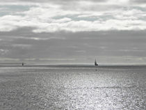 The Lonely Sea and Sky by Roger Butler