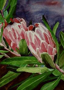 Protea von Marie Luise Strohmenger