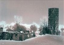 Barn in light Sepia von Curtis  Woods