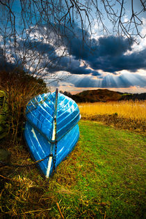 rowing boats in hibernation by meirion matthias