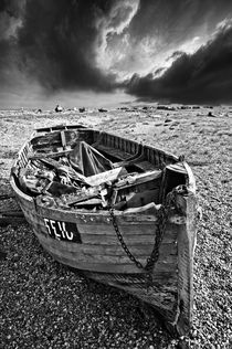 dungeness decay by meirion matthias