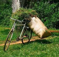 Fahrrad by Bettina Breuer
