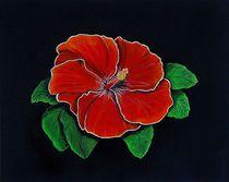 Acrylbild Hibiscus von Anke Franikowski