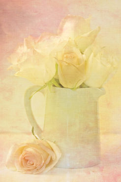 Marshmallow-roses1