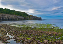The Headland by tkphotography
