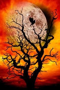 nuclear moonrise von meirion matthias