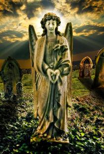 Angelic Light von meirion matthias