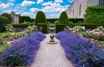 Lavender-sundial