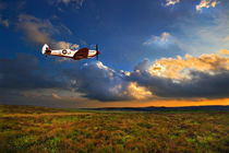 low flying evening spitfire by meirion matthias