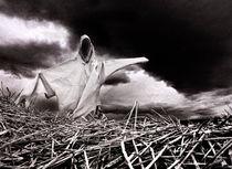 Scarecrow von Sergio Bondioni