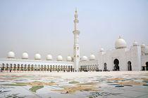 Moschee Abu Dhabi von Daniela  Bergmann