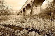 Hockley Railway Viaduct by Steven Poulton