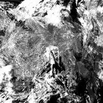 Symphony in Black and White von Benedikt Amrhein
