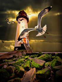 Talacre lighthouse with seagulls by meirion matthias