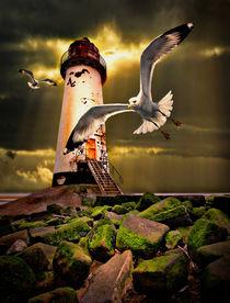 Talacre lighthouse with seagulls von meirion matthias