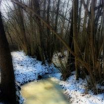 Frost I von Ursula Wolfangel-Hoppmann