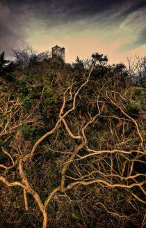 Dolwyddelan-castle