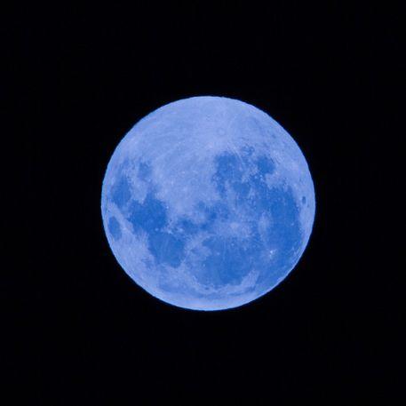 Blue-moon-9093-c