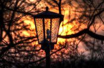 The Light Post  by Doug Graham