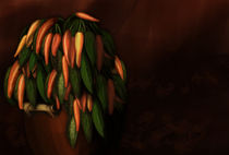 Chillies by Ekta Godhwani Yadav