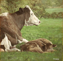 cow and calf in field by Martin  Davey
