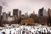 Central Park Skaters von James McQuarrie