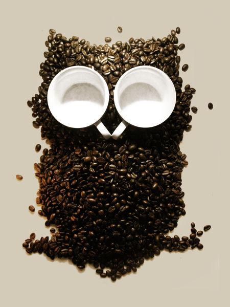 Hoot-night-owl-print