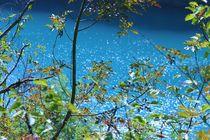 blue lake von Corinna Schumann
