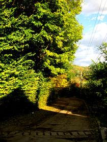 Sunny day in Breaza by Alex Boiciuc