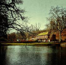 See von Schloss Mespelbrunn von Ursula Wolfangel-Hoppmann