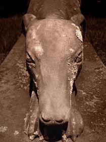 Greyhound Statue von Mary Rath