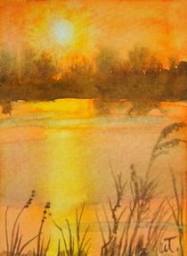 Lake Weir Sunrise von Warren Thompson