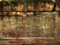 Roman coffin by Robert Gipson