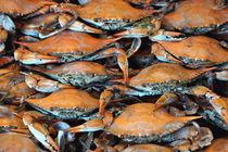 Crab Stack von Ellyce Moselle