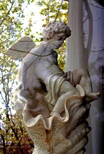 Angel-in-the-window-ssm