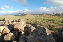 Arizona - Saguaro NP von usaexplorer