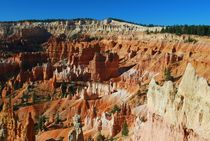 Bryce Canyon - USA von usaexplorer
