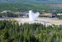 Old Faithful - Yellowstone NP von usaexplorer