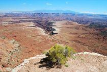 Canyonland NP von usaexplorer