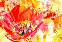 Tulpen von Matthias Rehme