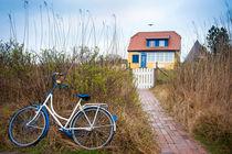 i want to ride my bicycle von Katarzyna Körner