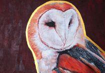 Barn Owl von Kristin Frenzel