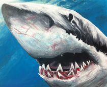 Shark by Kristin Frenzel
