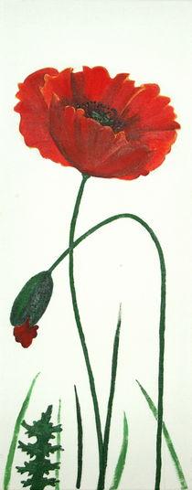 Mohnblume 2 von 3 von Lidija Kämpf
