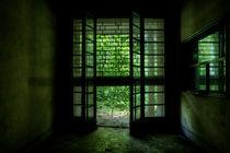 The Green Door von Giulio Asso