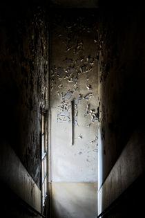 Creepy von Giulio Asso
