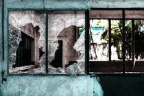 Broken Windows by Giulio Asso